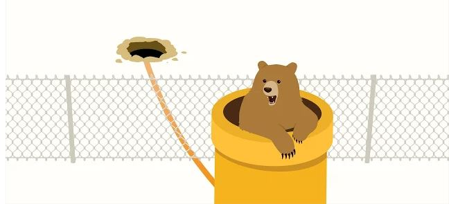 Vpn TunnelBear