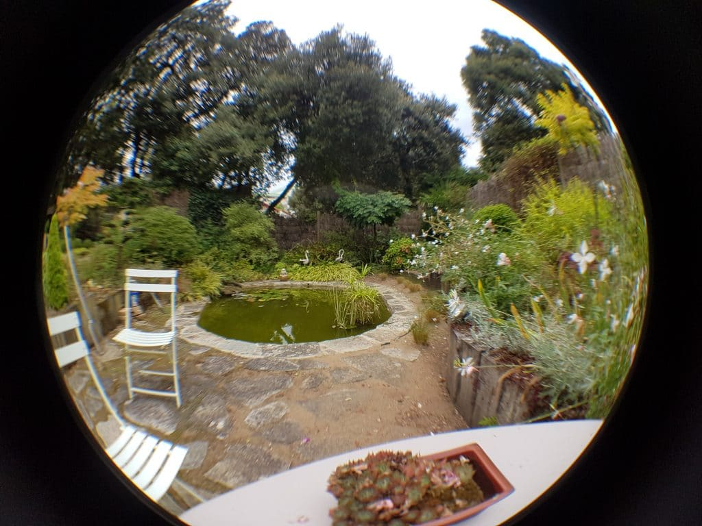 objectif-fisheye-iphone
